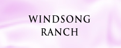 Windsong1